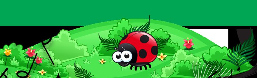 Liv the Ladybird banner